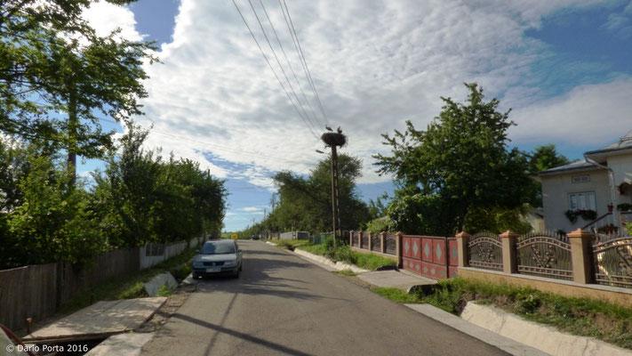 12 Darabani (Romania) luglio 2016