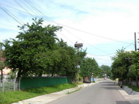 Una strada nei dintorni di Darabani, nord Romania