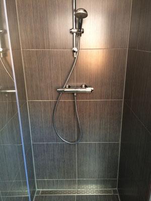 B&B Opperbest, badkamer met douche