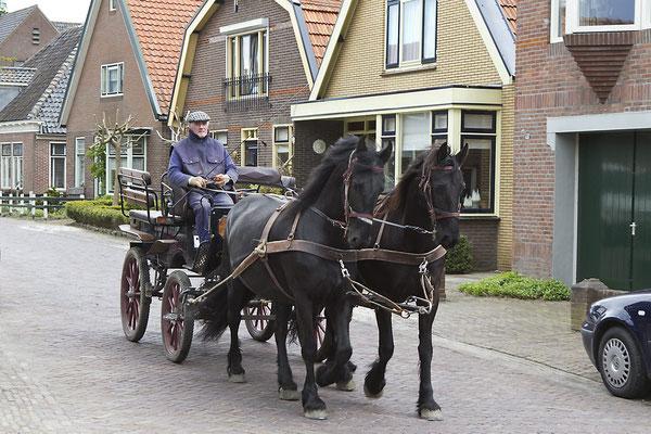 Opperdoes, paard en wagen