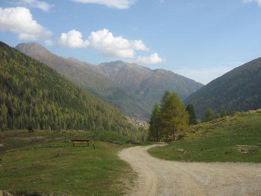 Passeggiate in Val Di Rabbi, Abete Rosso, Foto: A. Cicolini