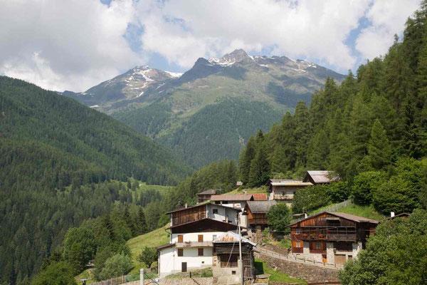 Panorama lato ovest, Abete Rosso, Val di Rabbi, Foto: M. Corradini