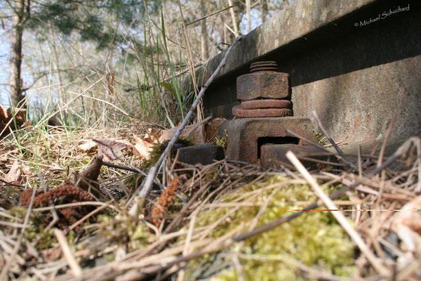 Altes Gleis aus der Mäuseperspektive