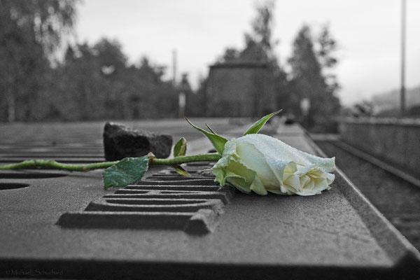 """Gedenkstätte Grunewald """"Gleis 17"""""""