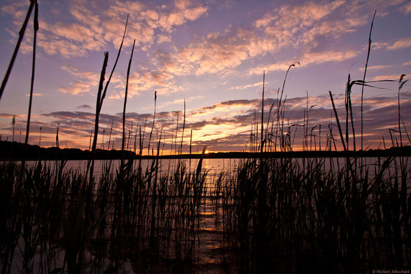 Sonnenuntergang Seddiner See