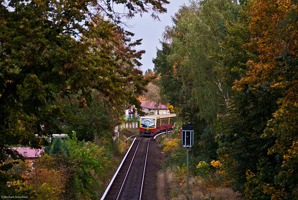 S-Bahn im Herbst