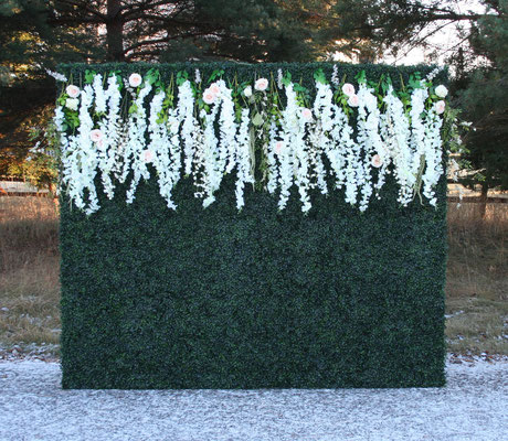 Boxwood Flower Wall