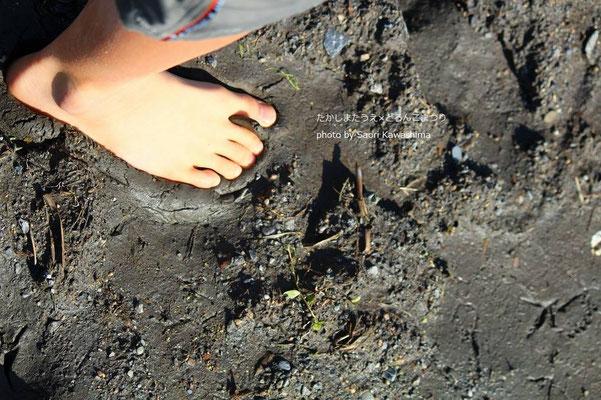 むにゅると足を伝って感じる田んぼの土。匂い。温度。