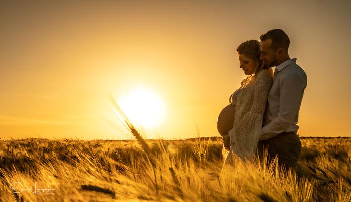photo grossesse en couple couché de soleil contre jour reflets or dans un champs de blés