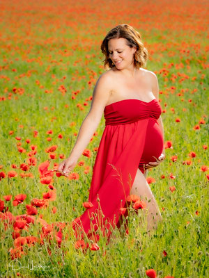 photo grossesse robe rouge cueillette coquelicots