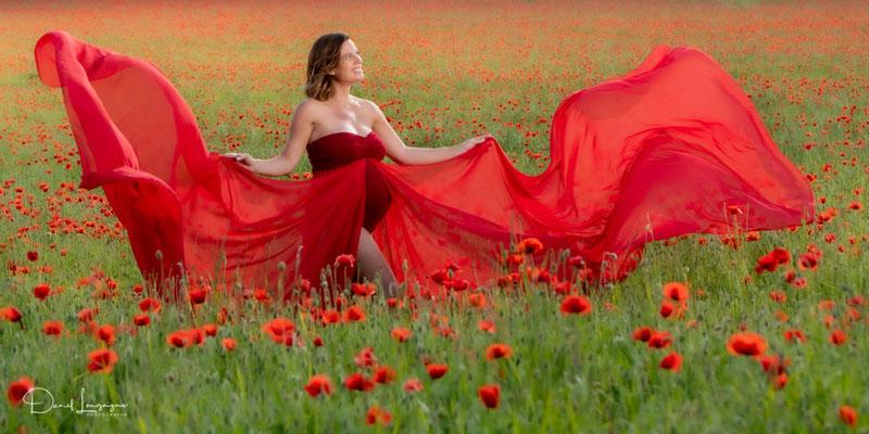 photo grossesse robe rouge en voile dans un champs de coquelicots