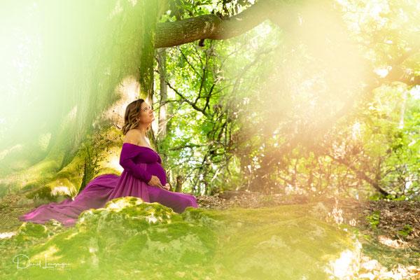 shooting grossesse; robe violette;  dans les bois; belle lumière