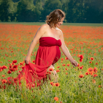 photo grossesse robe rouge cueillette coquelicots sourire