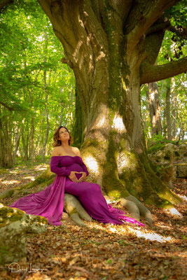 photo de grossesse robe violette dans les bois jeux de lumière
