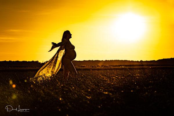 photo grossesse couché de soleil contre jour dans un champs de blés