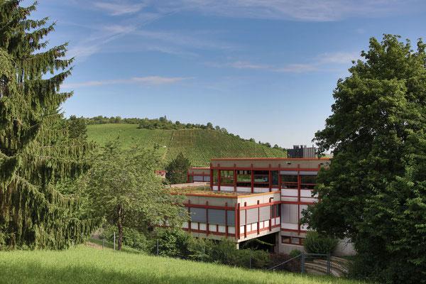 Steinenbergschule Stuttgart Hedelfingen - Schule und Schulalltag