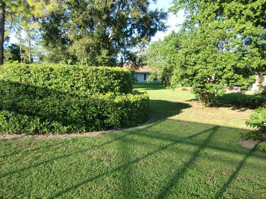 Florida Garten