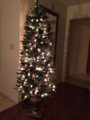 Weihnachtsbaum Villa Belly