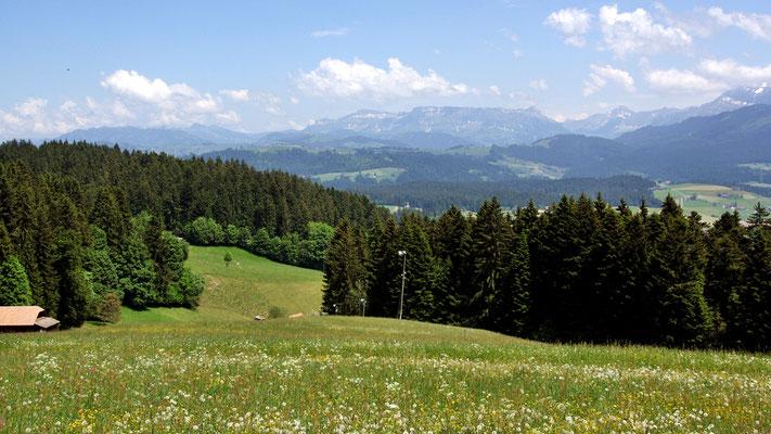 Ussicht Fluh - Bergstation Skilift mit Schrattenfluh - Hohgant