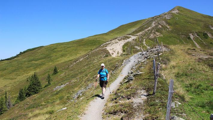 Auf dem Pinzgauer Spazierweg