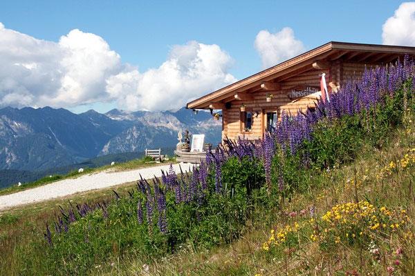 Bei der Bergstation der Gitsch-Bahn
