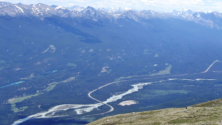 Der Parkway Richtung Icefield und Sumwapta-Pass Richtung Lake Louise und Banff