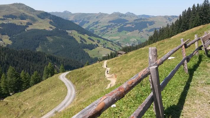 Eine der vielen Downhill Bikestrecken: Der Hackelberg Trail