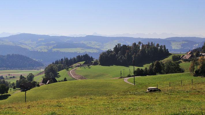 Gsanger - Haselholz - Richtung Grünenmatt