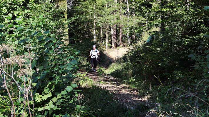 Abstieg nach Lützelflüh