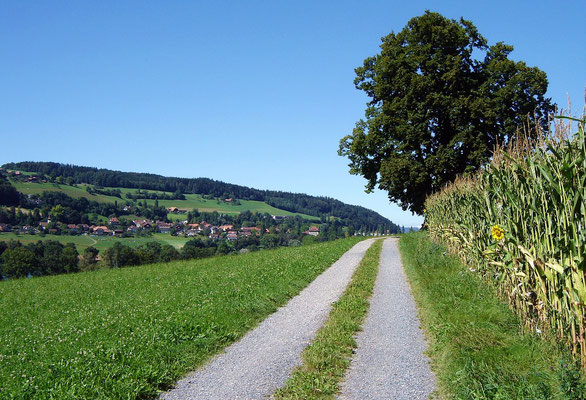 Churz vor Kirchdorf nomau e Blick zrügg ufe Wäg (ohni zu re Sauz-Süüle z'erschtarre)