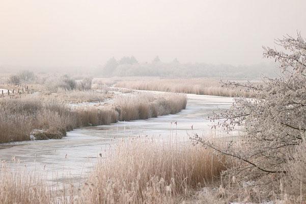 Eiskalte Landschaft