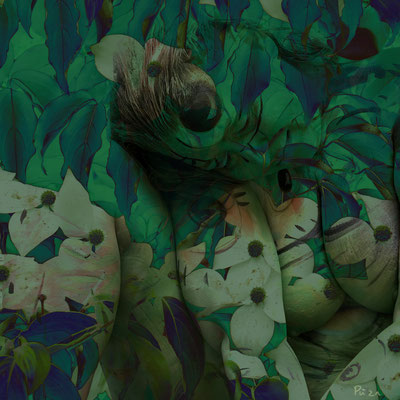 "Bodypainting ""Geheimnisvolle Blüte"", 2021, Fotomontage"