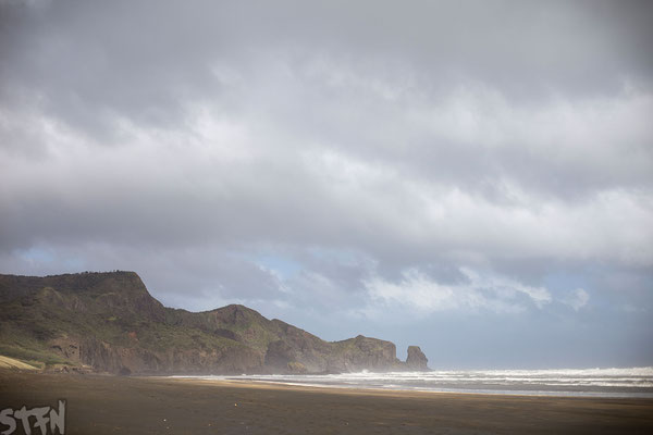 Bethells Beach, NZ 2017