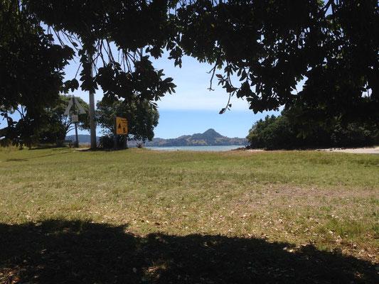 Purangi Regional Reserve
