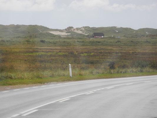 Die ersten Dünen Richtung Hvide Sande.