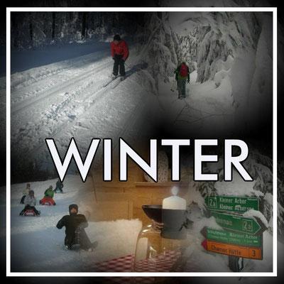 Winter Aktivurlaub In Bodenmais Im Bayerischen Wald Mit
