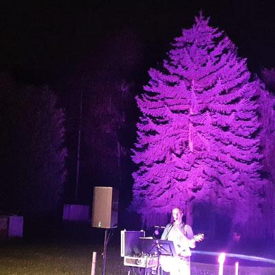 Open Air im Badebuffet Pulkau, schönes Ambiente, mein Scheinwerfer beleuchtet einen Baum