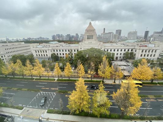 議員会館から国会議事堂を臨む