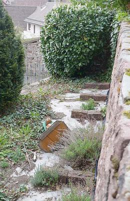 Bernadette im Kräutergarten liegend