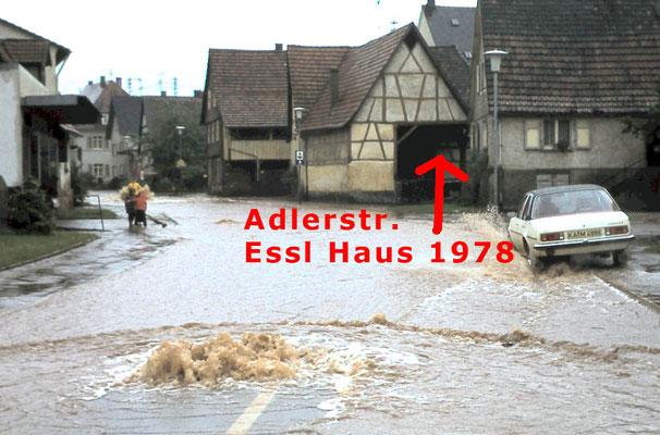 Adlerstraße, Essl Haus Scheuer