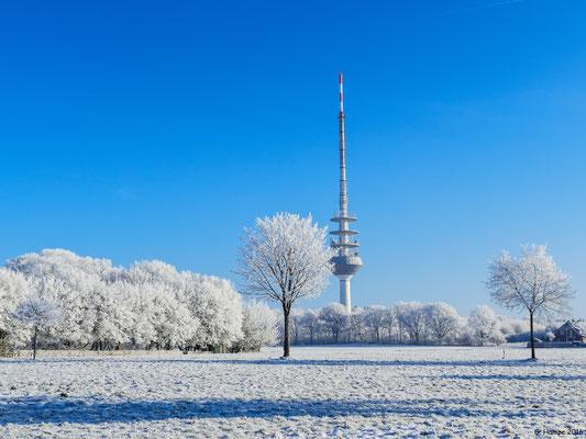 Winterland 47