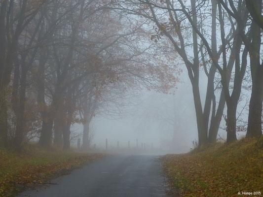 Nenndorfer Weg in Sieversen