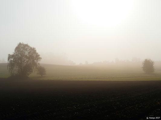 Toskana am Nenndorfer Weg