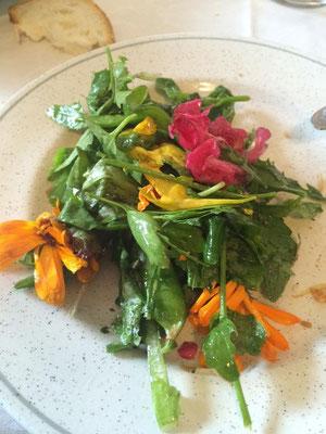 pausa pranzo: insalata di fiori ed erbette, raccolto dai nostri contadini