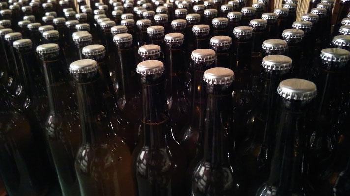 un esercito di bottiglie che riposano in cantina