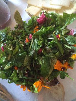 pausa pranzo: insalata di fiori ed erbette con formaggio, raccolto dai nostri contadini