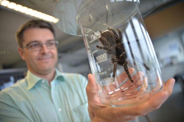 Bayreuth | Spinnenforschung