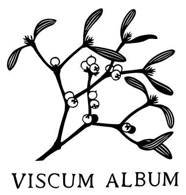 viscum_album_paper cut_Scherenschnitt