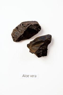 aloe_vera_002