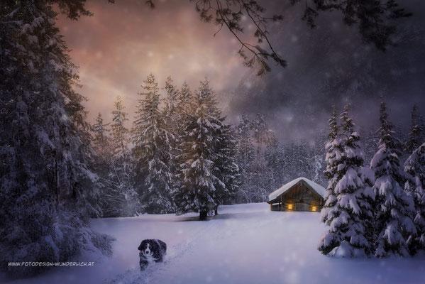 Weihnachtsedition 11